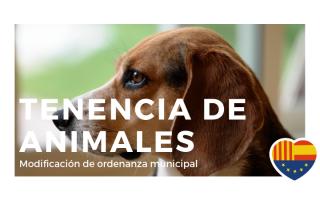 Modificación de la ordenanza sobre tenienza de animales